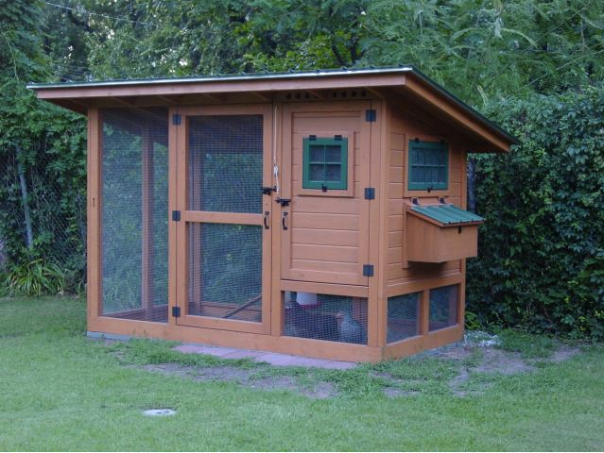We have chosen to build Wichita Cabin Coop. It will look super cute in the back of the yard!