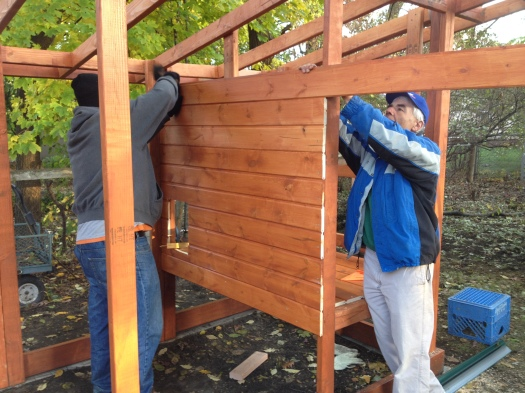 Matt and Eric install tongue-and-groove wood for the roosting box. See the little hole where the chickens will come out?