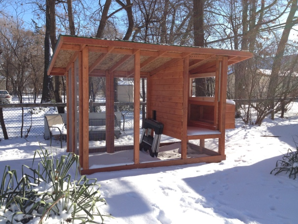 We just had our first significant snow of the season, and the coop looks great. From this angle you can see that we need to finish two doors, then we'll be ready for inspection.
