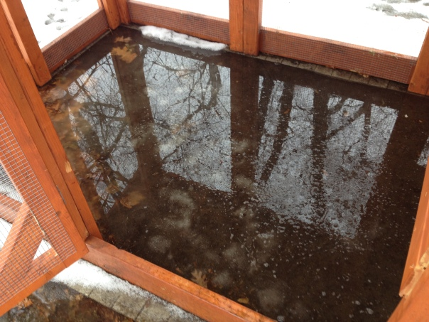 After a winter thaw, we found 3 inches of water in the run.