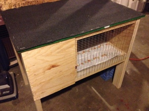 The rabbit-hutch-turned-brooder.