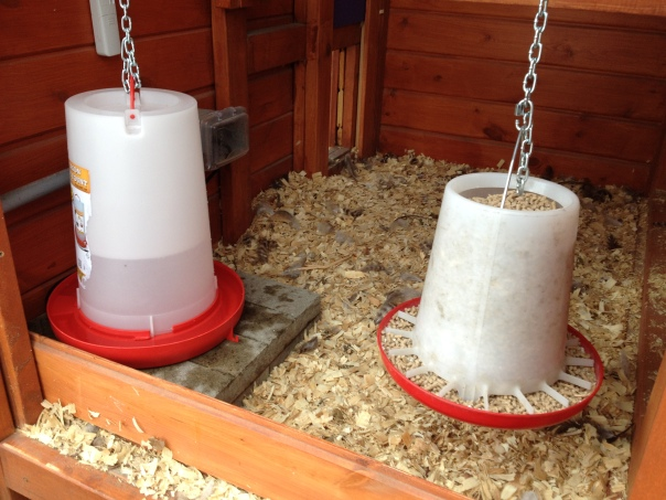The electric water fountain (left) and the food are now in the hen house.