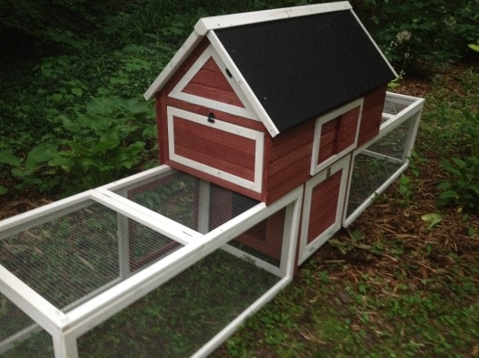 small red chicken coop.